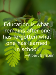 Education is what remains after one has forgotten what one has learned in school. Albert Einstein